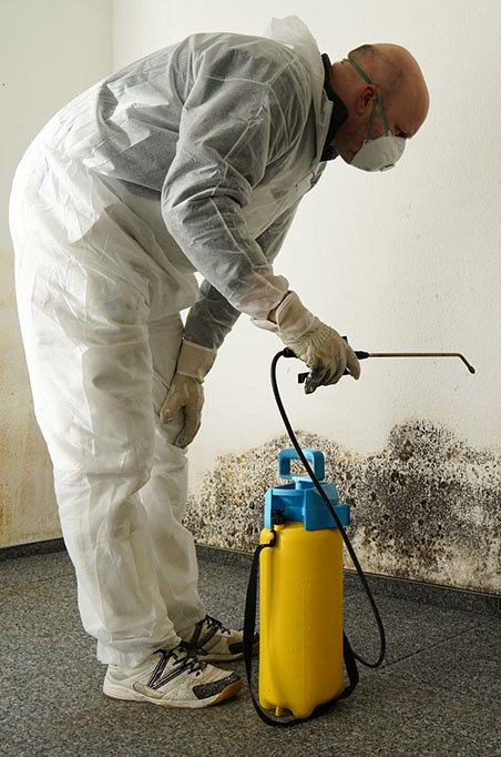man removing mold with cleaner